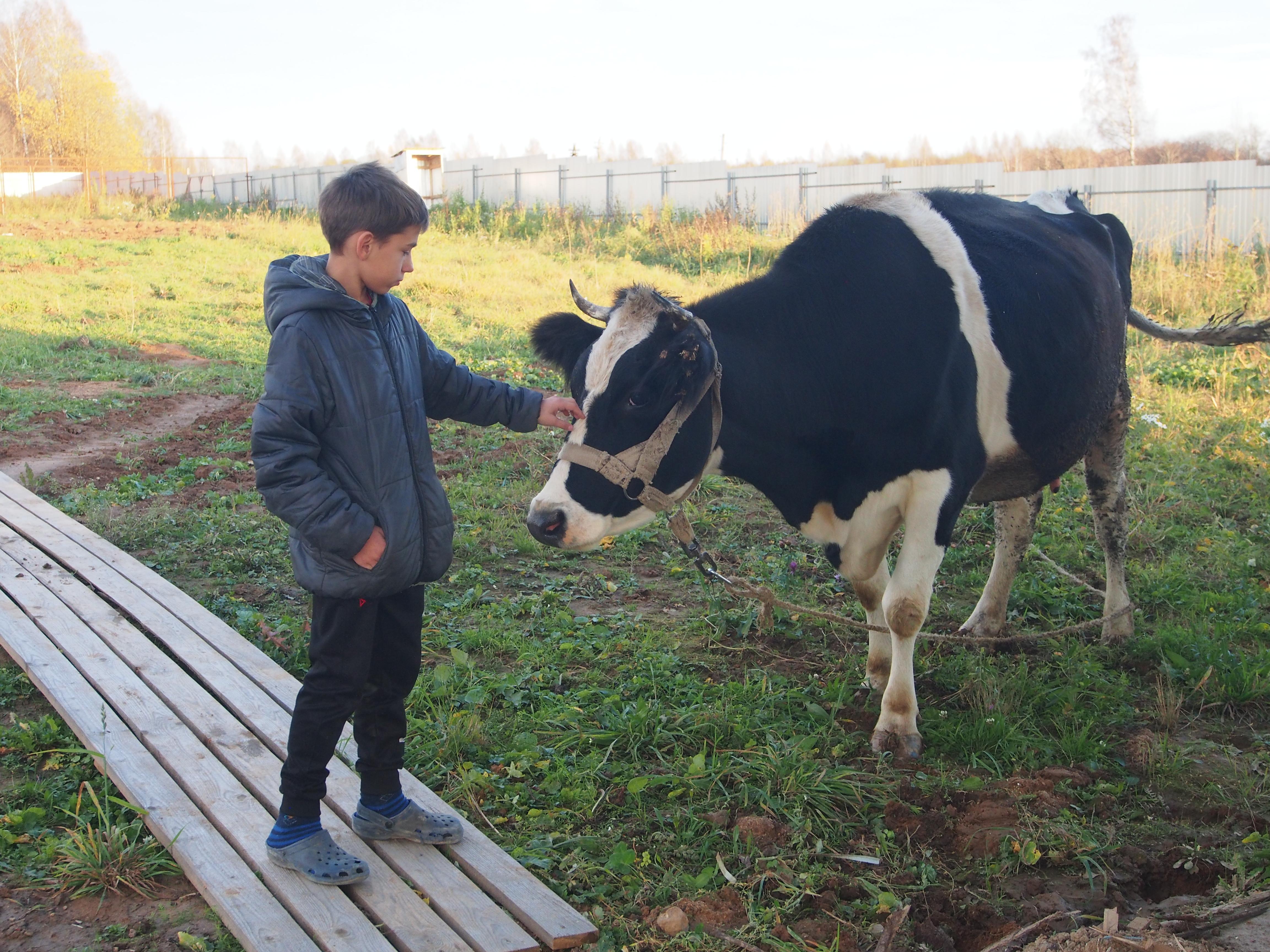 Новости «Школы фермеров»