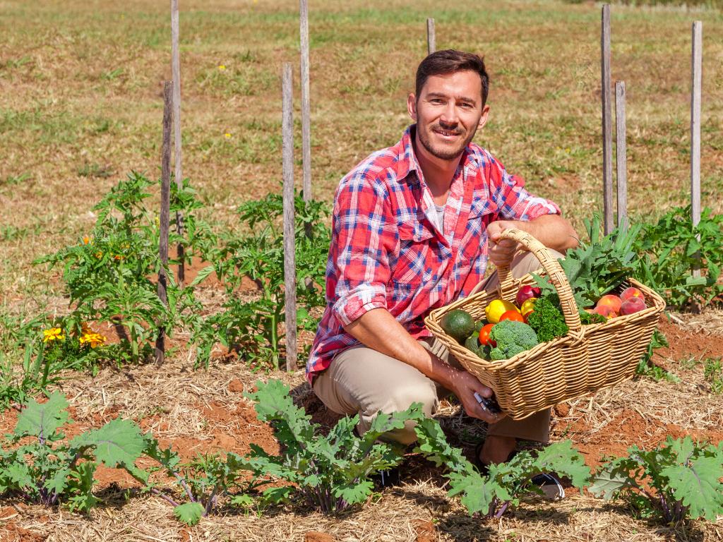 Мы ищем бизнес-партнера для запуска агропроекта в экодеревне Семеево