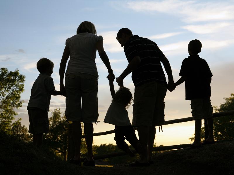 Семья и семейная система